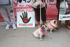 Yulin-Hundefestival Protestors Chinesisches Neujahrsfest, Jahr des Hundes London, im Februar 2017 Stockfotografie