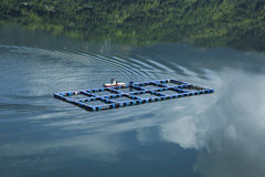Yulong湖的渔场在浙江温州 库存图片