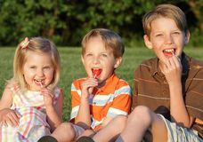 Yum. Three young siblings sitting together happily licking lollipops in summer Royalty Free Stock Photos