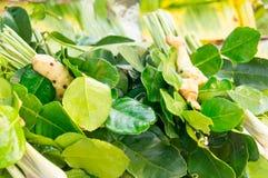 Yum di gatto delle spezie e delle erbe fresche al mercato Immagini Stock