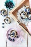 Yummy λίγο muffin βακκινίων στοκ εικόνες