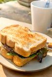 Yummy говядина и зажаренный сыром сандвич на круглом cream цвете plat Стоковые Изображения RF