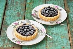 2 yummy домодельных торта с ежевиками и сахаром замороженности на ol Стоковые Фото