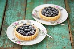2 yummy домодельных торта с ежевиками и сахаром замороженности Стоковая Фотография