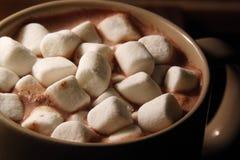 Yummy тепло Стоковые Изображения RF