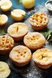 Yummy appeltaarten verfraaid suikerpoeder Het dessert van het de herfstgebakje op zwarte raad royalty-vrije stock foto's