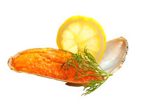 Yummy baking mussels under roe isolated Stock Images