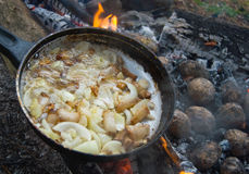 Yummy barbecue with lard, onion and potatoes Stock Photos