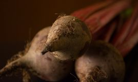 Yummy beet stock images