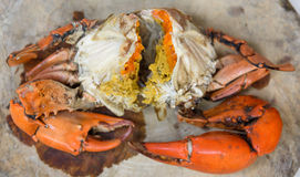 Yummy crab with egg Stock Images