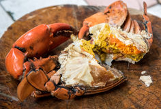 Yummy crab with egg, Sea food Royalty Free Stock Images