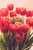 Yummy cupcake and red tulips on light background. Selective focu Royalty Free Stock Images