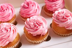 Yummy cupcakes in box. Close up Royalty Free Stock Photo