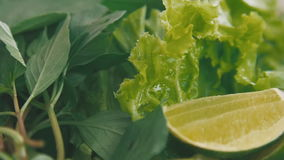Yummy dish of dill cabbage and citrus stock video