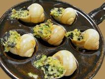 Yummy escargot cu. Close up photo of yummy france food escargot