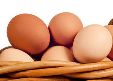 Farm Fresh Eggs In Basket Close Up Isolated Stock Photos