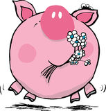 Yummy flowers. Vector illustration of an silly pig eating flowers Royalty Free Stock Photo