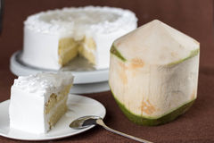 Yummy fresh coconut topping milk sponge cake with low sugar Royalty Free Stock Images