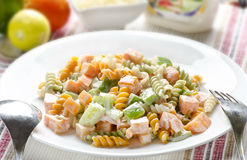 Yummy healthy pasta salad Royalty Free Stock Images