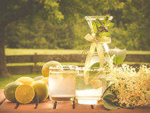 Yummy homemade elderflower drink. Photo shows a closeup of yummy homemade elderflower refreshing drink decoraded with elder blossom, lemons; garden fence and Royalty Free Stock Image