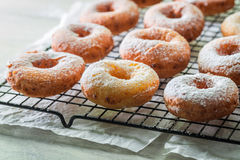 Yummy and homemade golden donuts ready to eat. Closeup of yummy and homemade golden donuts ready to eat Stock Photography
