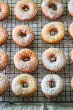 Yummy and homemade homemade donuts freshly baked. Closeup of yummy and homemade homemade donuts freshly baked Stock Images