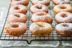 Yummy and homemade homemade donuts with powdered sugar. Closeup of yummy and homemade homemade donuts with powdered sugar Stock Images