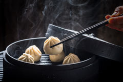 Yummy and hot chinese dumplings Stock Images