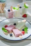 Yummy ice cream with fruity yogurt Stock Photo