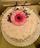 Yummy Kuchen stockbilder