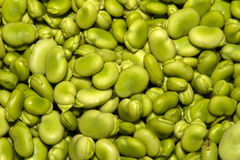 Yummy lima beans Royalty Free Stock Images