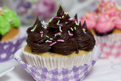Yummy muffin. Sweet chocolate and colorful muffins on a table Royalty Free Stock Photos
