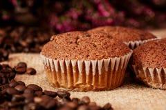 Yummy muffins stock image