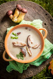 Yummy mushroom soup made of noble mushrooms. Closeup of yummy mushroom soup made of noble mushrooms Stock Photography