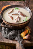 Yummy mushroom soup with mushrooms and parsley. Closeup of yummy mushroom soup with mushrooms and parsley Royalty Free Stock Photos