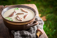 Yummy mushroom soup on old wooden table. Closeup of yummy mushroom soup on old wooden table Stock Image