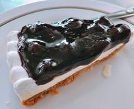 Yummy pastei van de bosbessenkaas stock foto