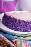 This is yummy purple yam cake. The root vegetable ,which has a sublime deep purple color ,makes the taste soft and sweet. royalty free stock image