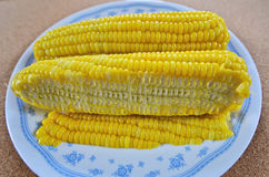 Yummy ripe super sweet corns after cut. In ceramic dish Stock Images
