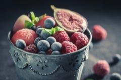 Yummy roomijssorbet met verse bevroren vruchten royalty-vrije stock fotografie
