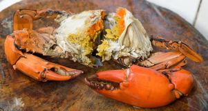 Yummy steamed crab with egg Stock Image