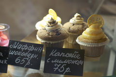 Yummy Traditional Colorful Chocolate Cupcakes Royalty Free Stock Photography