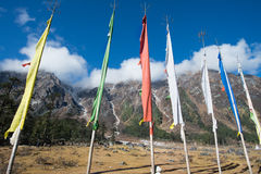 Yumthang Valley, India Royalty Free Stock Photo