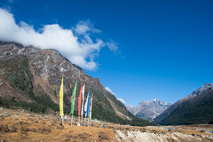 Yumthang Valley, India Royalty Free Stock Photos
