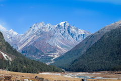 Yumthang Valley, India Stock Photos
