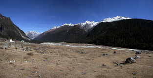 Yumthang valley - North Sikkim Stock Images
