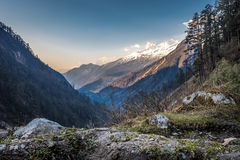 Yumthang Valley In Northern Sikkim, India Stock Image
