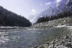 Yumthang valley Royalty Free Stock Images