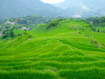 Yun he village Stock Photo