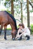 Yung tonårs- flicka som sitter nära hennes favorit- kastanjebruna häst fotografering för bildbyråer